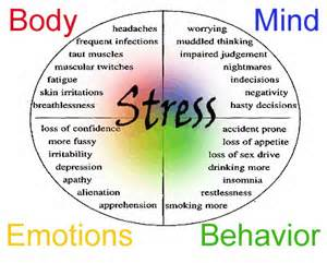 mind body connection stress