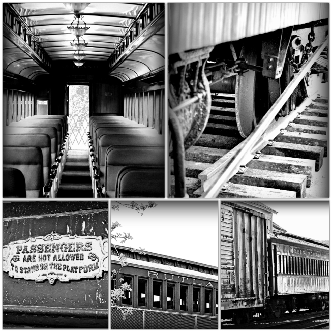 B n w train_Fotor_Collage